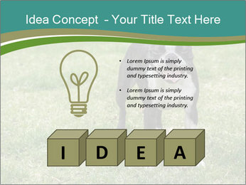0000078544 PowerPoint Template - Slide 80