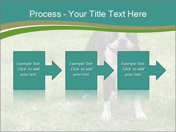 0000078544 PowerPoint Template - Slide 88