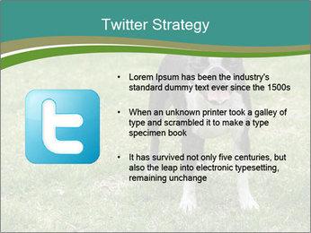 0000078544 PowerPoint Templates - Slide 9