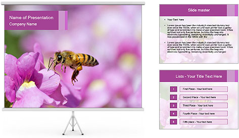 0000078552 PowerPoint Template