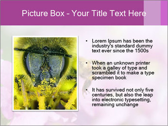 0000078552 PowerPoint Templates - Slide 13