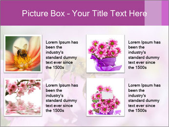 0000078552 PowerPoint Templates - Slide 14
