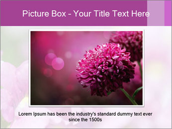 0000078552 PowerPoint Templates - Slide 16