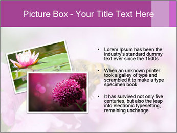 0000078552 PowerPoint Templates - Slide 20