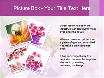 0000078552 PowerPoint Templates - Slide 23