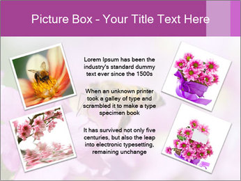 0000078552 PowerPoint Templates - Slide 24