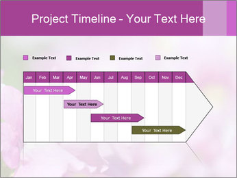 0000078552 PowerPoint Templates - Slide 25
