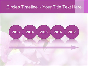 0000078552 PowerPoint Templates - Slide 29
