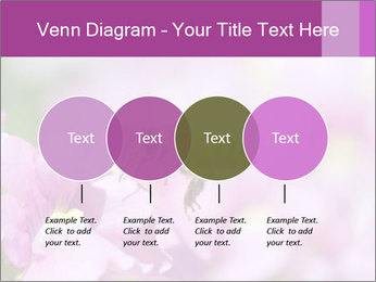 0000078552 PowerPoint Templates - Slide 32
