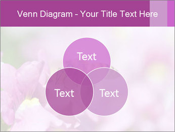 0000078552 PowerPoint Templates - Slide 33