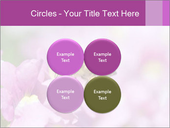0000078552 PowerPoint Templates - Slide 38