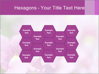 0000078552 PowerPoint Templates - Slide 44