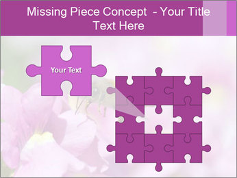 0000078552 PowerPoint Templates - Slide 45