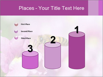 0000078552 PowerPoint Templates - Slide 65