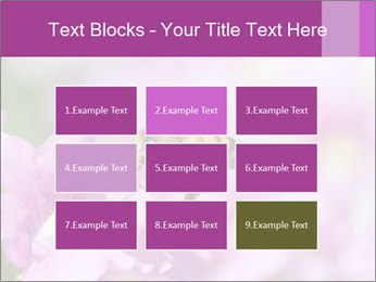 0000078552 PowerPoint Templates - Slide 68