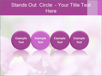 0000078552 PowerPoint Templates - Slide 76