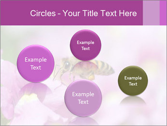 0000078552 PowerPoint Templates - Slide 77