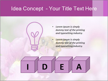 0000078552 PowerPoint Templates - Slide 80