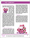 0000078552 Word Templates - Page 3