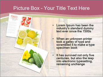 0000078566 PowerPoint Template - Slide 17