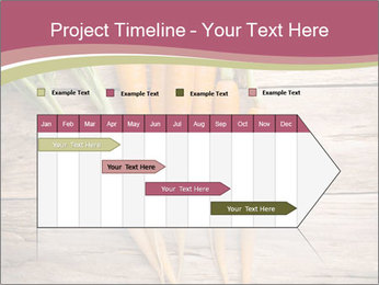 0000078566 PowerPoint Template - Slide 25