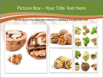 0000078567 PowerPoint Templates - Slide 19