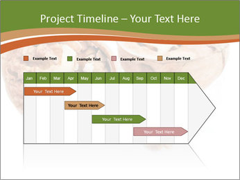 0000078567 PowerPoint Templates - Slide 25
