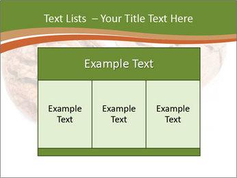0000078567 PowerPoint Template - Slide 59