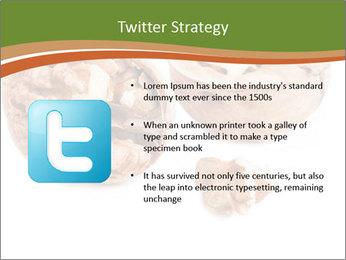 0000078567 PowerPoint Template - Slide 9