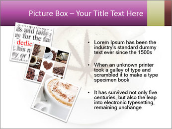 0000078573 PowerPoint Template - Slide 17