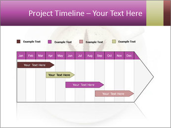 0000078573 PowerPoint Template - Slide 25