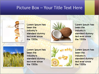 0000078585 PowerPoint Template - Slide 14