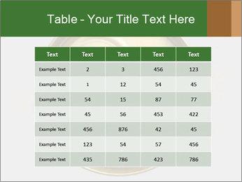 0000078592 PowerPoint Template - Slide 55
