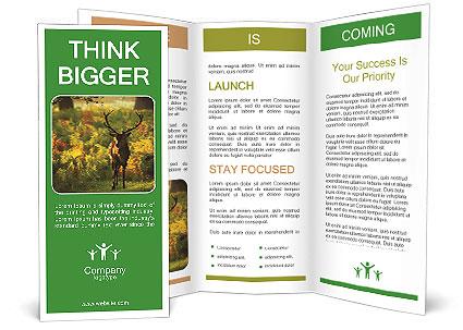 0000078601 Brochure Templates