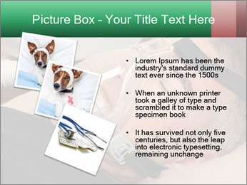 0000078603 PowerPoint Template - Slide 17