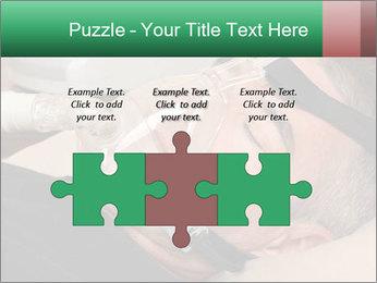 0000078603 PowerPoint Templates - Slide 42