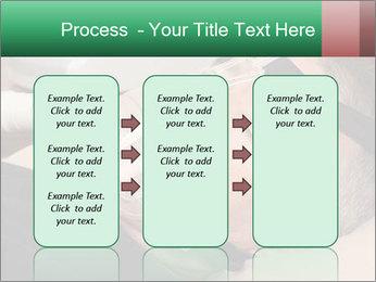 0000078603 PowerPoint Template - Slide 86