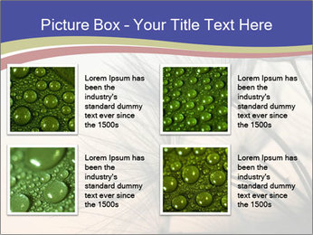 0000078607 PowerPoint Template - Slide 14