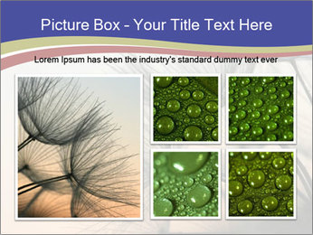 0000078607 PowerPoint Template - Slide 19