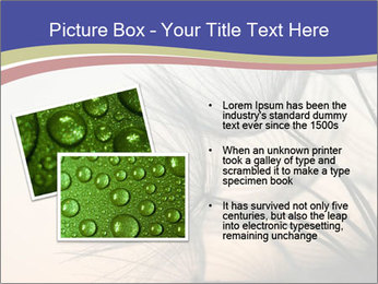 0000078607 PowerPoint Template - Slide 20