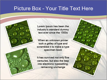 0000078607 PowerPoint Template - Slide 24