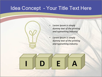 0000078607 PowerPoint Template - Slide 80