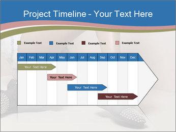 0000078611 PowerPoint Template - Slide 25