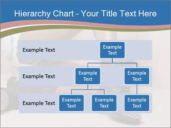 0000078611 PowerPoint Template - Slide 67