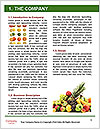 0000078614 Word Template - Page 3