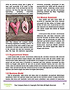 0000078619 Word Templates - Page 4