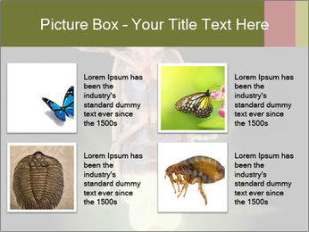 0000078621 PowerPoint Template - Slide 14