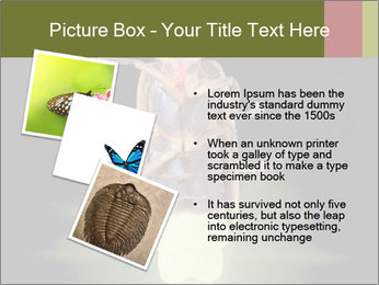0000078621 PowerPoint Template - Slide 17