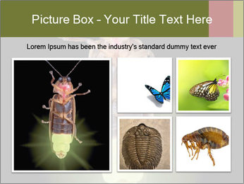 0000078621 PowerPoint Template - Slide 19