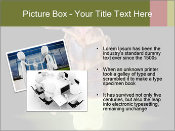 0000078621 PowerPoint Template - Slide 20